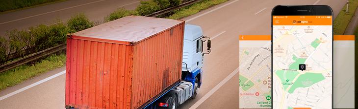 camion-con-contenedor-en-carretera
